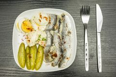 White plate with marinated herring in oil, boiled hard-boiled egg, cucumber and mayonnaise. Seasoned with black pepper and red pap Royalty Free Stock Image