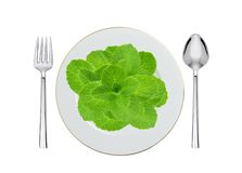 White plate with mint, spoon and fork isolated on white Stock Photography