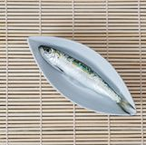 White plate with one sardine Royalty Free Stock Photography