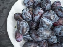 White plate with ripe prunes on a dark wooden background royalty free stock photos