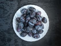 White plate with ripe prunes on a dark wooden background royalty free stock photo