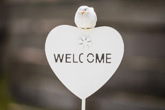White plate Welcome Stock Photography