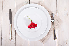 White  plates with fork and knife Royalty Free Stock Photography