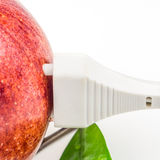 White plug is connected to the red apple on white background Royalty Free Stock Photography