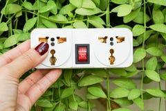 White plug socket with nature background Stock Photography