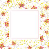 White Plum Blossom Flower Banner Card. Vector Illustration.  vector illustration