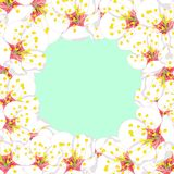 White Plum Blossom Flower Border isolated on Green Mint Background. Vector Illustration.  royalty free illustration