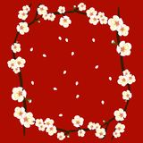 White Plum Blossom Flower Border on Red Background. Vector Illustration.  royalty free illustration