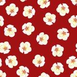 White Plum Blossom Flower Seamless on Red Background. Vector Illustration. White Plum Blossom Flower Seamless on Red Background. Vector Illustration royalty free illustration