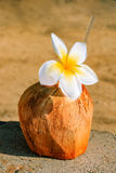 White plumeria decorating a drink in a coconut shell Royalty Free Stock Photography