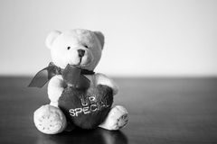 White Plush Teddy Bear. Hugging a heart that says you are special Stock Images