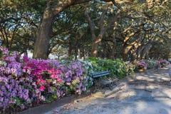 White Point Garden Charleston South Carolina stock photos