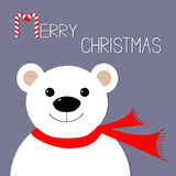 White polar bear in red scarf. Candy cane. Merry Christmas Greeting Card. Violet background. Flat design Royalty Free Stock Photography