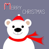 White polar bear in Santa Claus hat and scarf. Candy cane.  Royalty Free Stock Photo