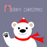 White polar bear in santa claus hat and scarf, paw. Candy cane. Merry Christmas Greeting Card. Violet background. Flat design Royalty Free Stock Photo