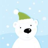White polar bear on snow