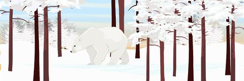 A white polar bear walks through a snowy pine forest. stock illustration