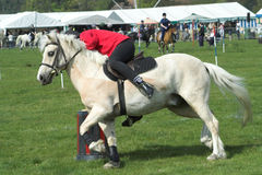 White Pony. Girl on a white pony taking part in an obstacle event at a village gymkhana Stock Photo
