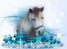 White pony with christmas gifts Stock Photos