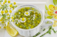 White porcelain cup filled with chamomile flowers royalty free stock images
