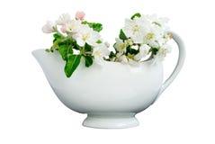 White porcelain milk jug. Light porcelain milk jug isolated on white background Stock Photography