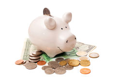The white porcelain pig with coins and banknotes Royalty Free Stock Images