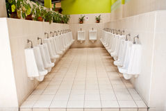 White porcelain urinals public toilets royalty free stock image