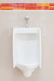 White porcelain urinals Stock Photo