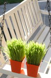 White porch swing with grass Stock Image
