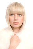 White portrait Royalty Free Stock Images