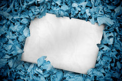 White poster buried into blue leaves Royalty Free Stock Photography
