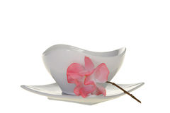White pot and plate with flower Stock Photography