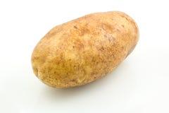 White Potato. Isolated on white Stock Photography