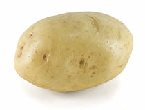 White Potato. Raw white potato, white background stock images