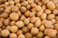 White Potatoes. At an open air farmers market Royalty Free Stock Image