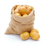 White potatoes in burlap sack Stock Image