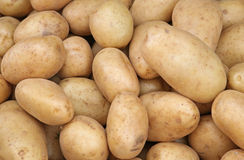 White potatoes Stock Photos