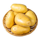White potatoes fresh picked in bowl isolated Royalty Free Stock Images