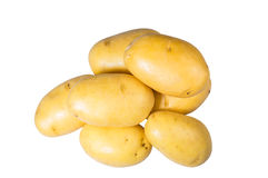 White potatoes fresh picked isolated Royalty Free Stock Photography