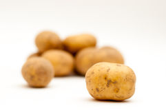 White potatoes pile Royalty Free Stock Images