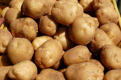 White Potatoes for Sale Stock Photos