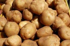 White Potatoes for Sale Stock Photos