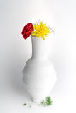White pottery vase, red and yellow flowers on white background. Still life composition of white pottery vase and two red and yellow flowers on white background Royalty Free Stock Images