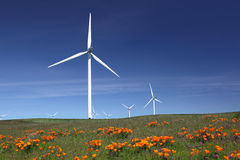 White Power Generating Wind Turbines, Wildflowers Stock Photos