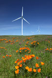 White Power Generating Wind Turbines, Wildflowers. White power generating wind turbines, windmills against blue sky, orange wildflowers, california poppies, on stock photography