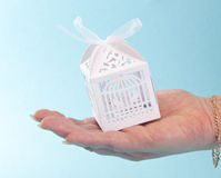 White present box in the hand Royalty Free Stock Images