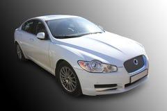 White prestige of car Stock Image