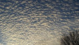 White puffy clouds and blue sky before sunset Royalty Free Stock Photography