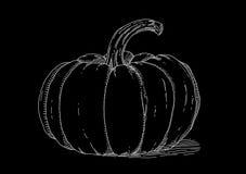 White pumpkin on black background Stock Images
