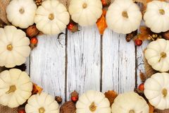 White pumpkin and brown leaves frame over white wood. Autumn frame of white pumpkins and brown leaves over a rustic white wood background Royalty Free Stock Image